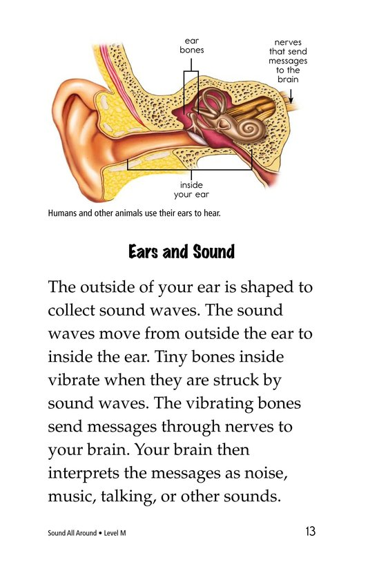 Book Preview For Sound All Around Page 13