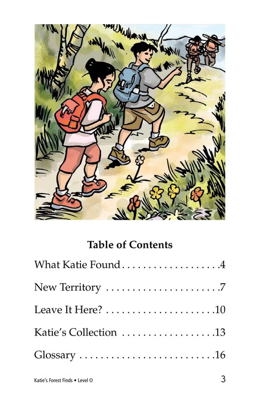 Book Preview For Katie's Forest Finds Page 3