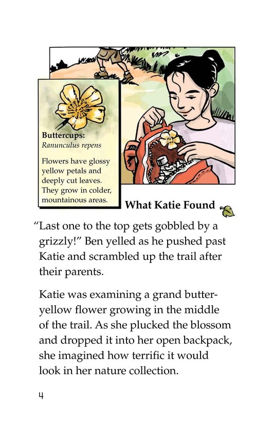 Book Preview For Katie's Forest Finds Page 4