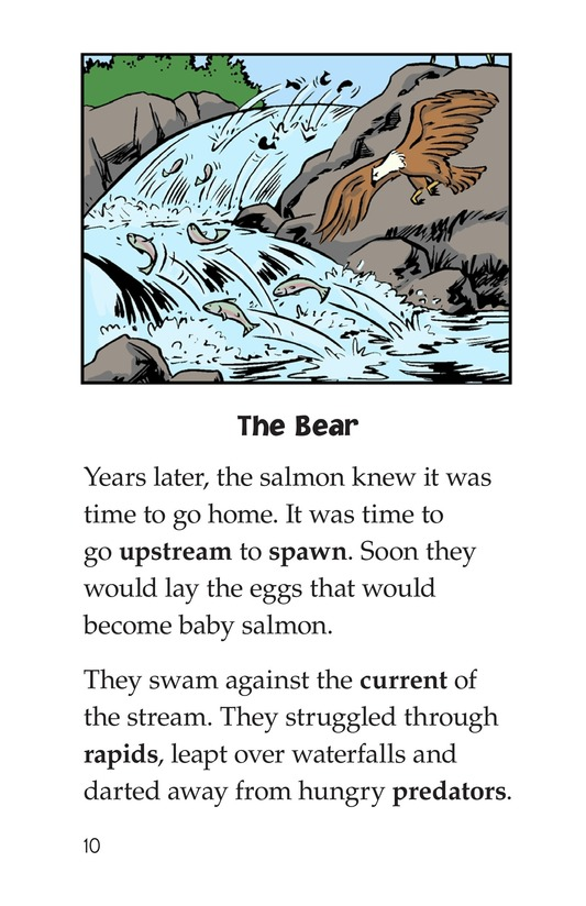 Book Preview For Leap! A Salmon's Story Page 10