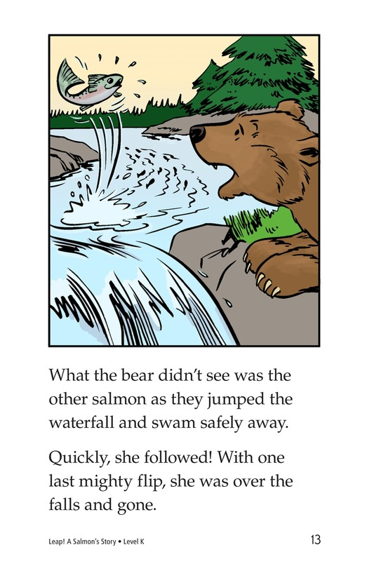 Book Preview For Leap! A Salmon's Story Page 13