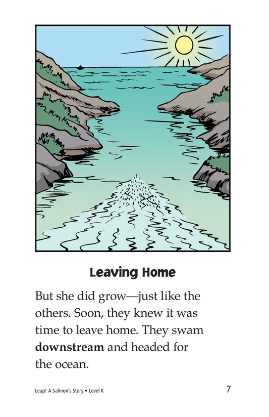 Book Preview For Leap! A Salmon's Story Page 7