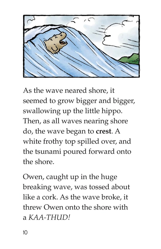 Book Preview For Owen and the Tortoise Page 10