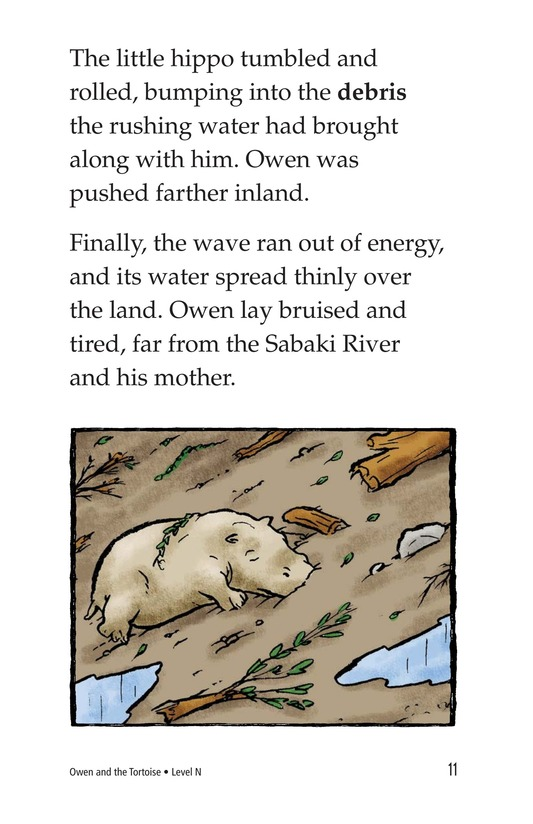 Book Preview For Owen and the Tortoise Page 11