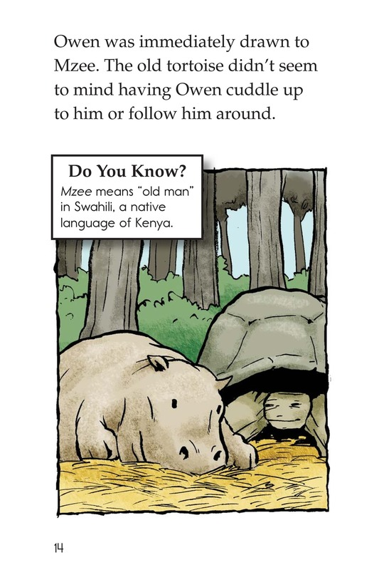 Book Preview For Owen and the Tortoise Page 14