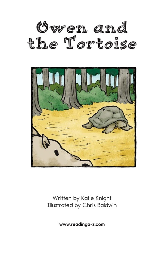 Book Preview For Owen and the Tortoise Page 2