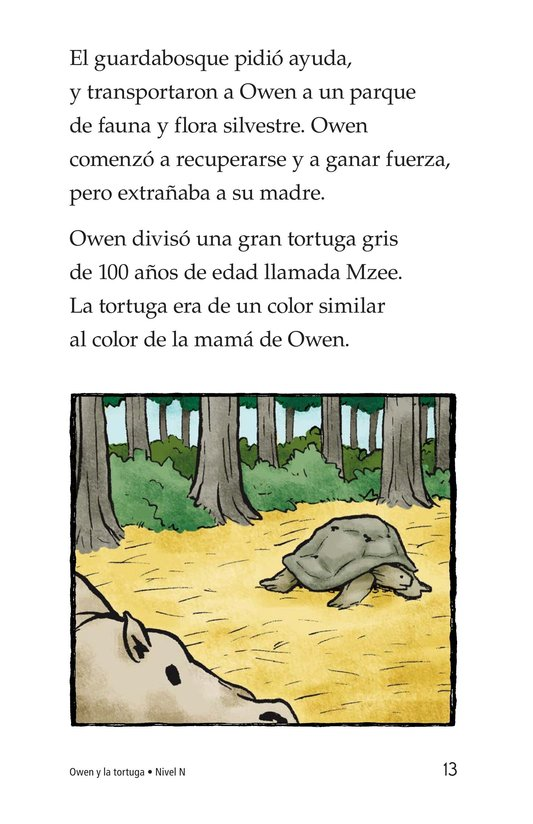 Book Preview For Owen and the Tortoise Page 13