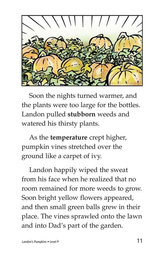 Book Preview For Landon's Pumpkins Page 11