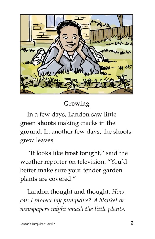 Book Preview For Landon's Pumpkins Page 9