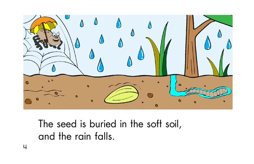 Book Preview For A Seed Grows Page 4