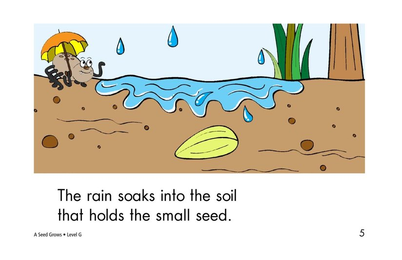 Book Preview For A Seed Grows Page 5