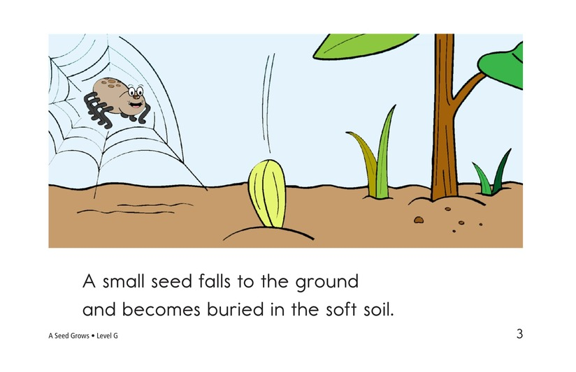 Book Preview For A Seed Grows Page 3