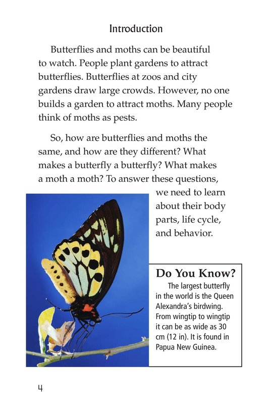 Book Preview For Butterflies and Moths Page 4