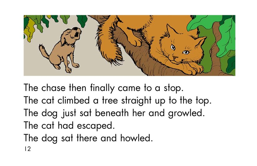 Book Preview For The Chase Page 12