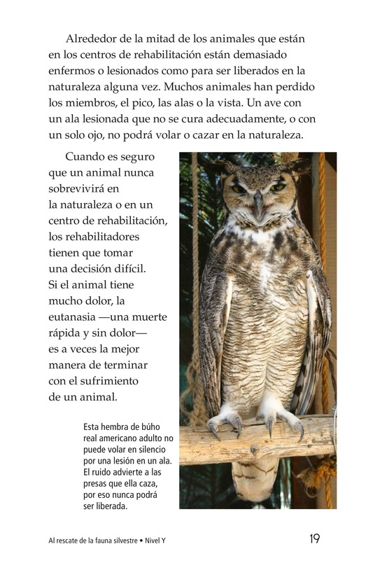 Book Preview For Wildlife Rescue Page 19