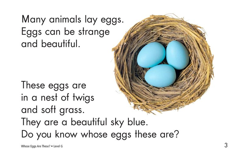 Book Preview For Whose Eggs Are These? Page 3