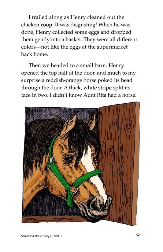 Book Preview For Samson: A Horse Story Page 9