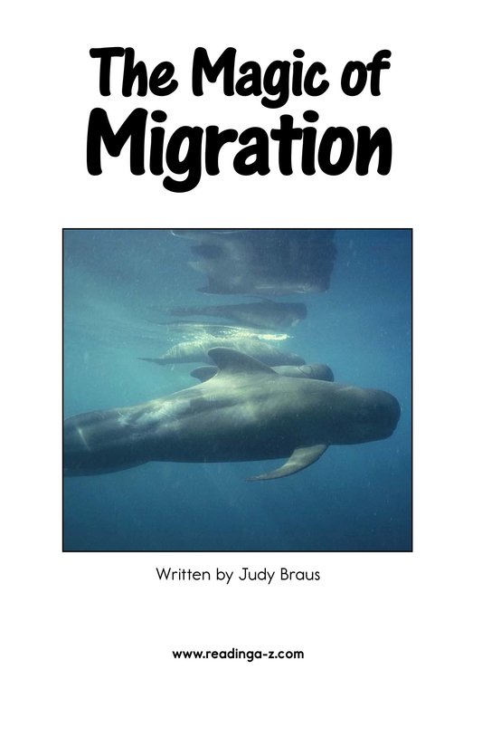 Book Preview For The Magic of Migration Page 2