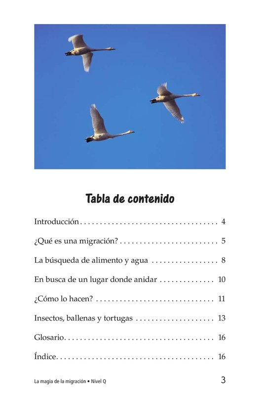 Book Preview For The Magic of Migration Page 3