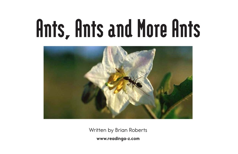 Book Preview For Ants, Ants, and More Ants Page 2