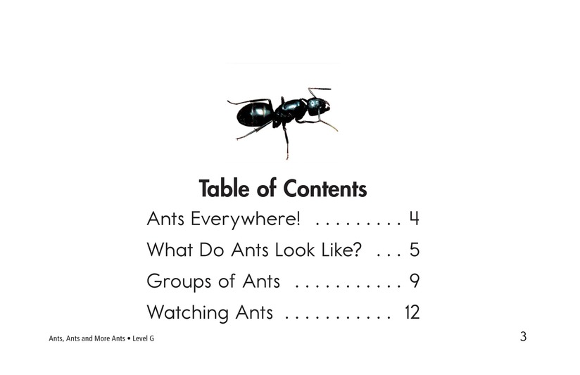 Book Preview For Ants, Ants, and More Ants Page 3