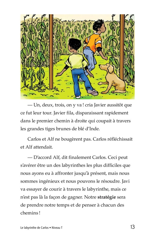 Book Preview For Carlos's Puzzle Page 13