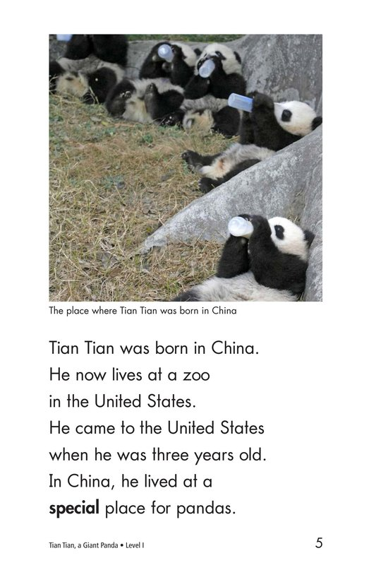 Book Preview For Tian Tian, a Giant Panda Page 5