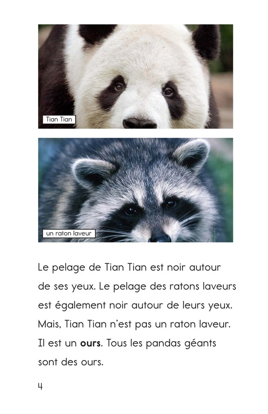 Book Preview For Tian Tian, a Giant Panda Page 4