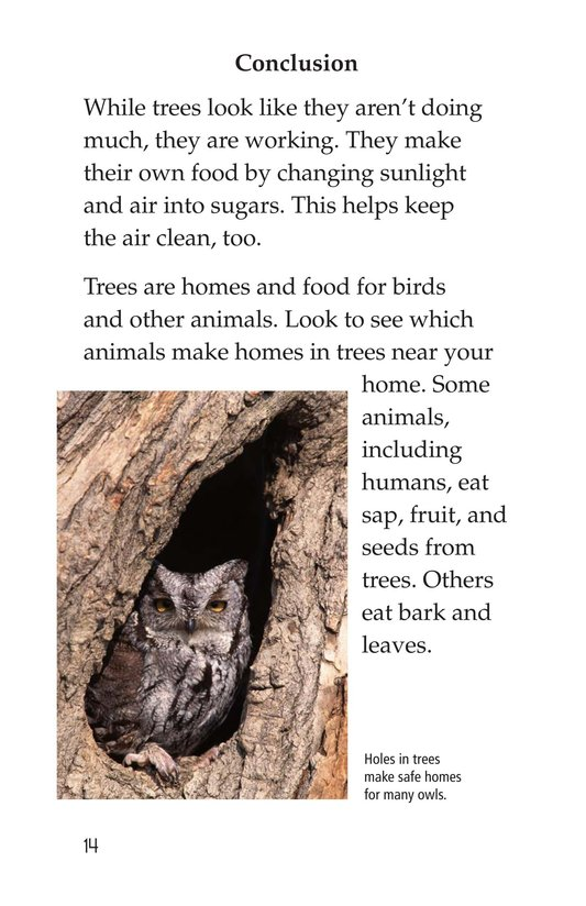 Book Preview For About Trees Page 14
