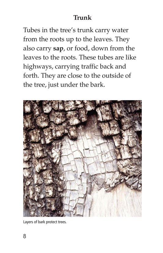 Book Preview For About Trees Page 8