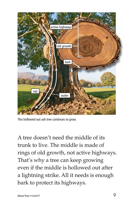 Book Preview For About Trees Page 9