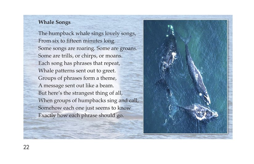 Book Preview For Ocean Poems Page 22