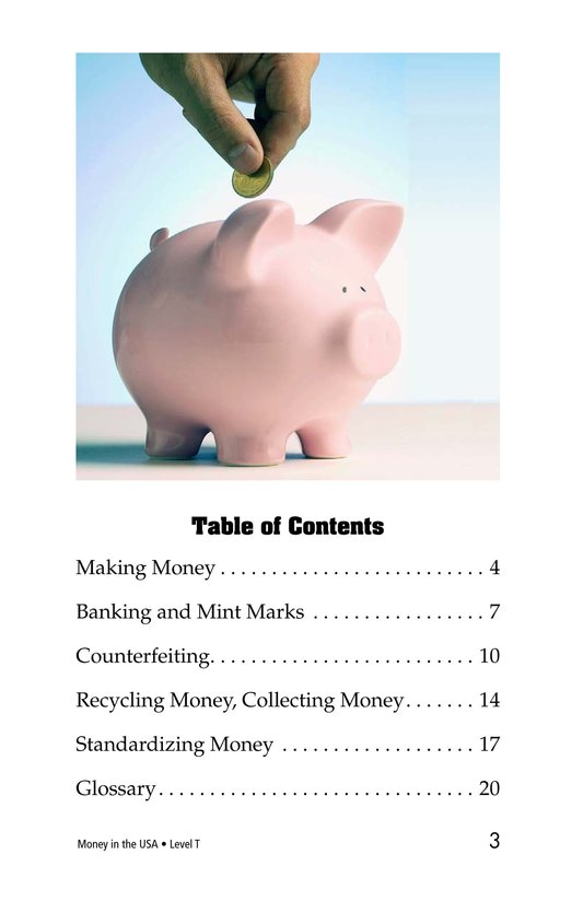Book Preview For Money in the USA Page 3