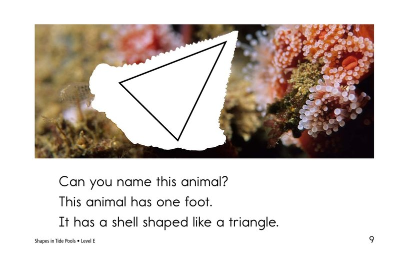 Book Preview For Shapes in Tide Pools Page 9