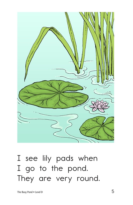 Book Preview For The Busy Pond Page 5