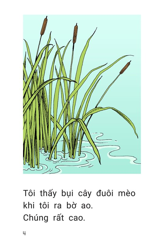 Book Preview For The Busy Pond Page 4
