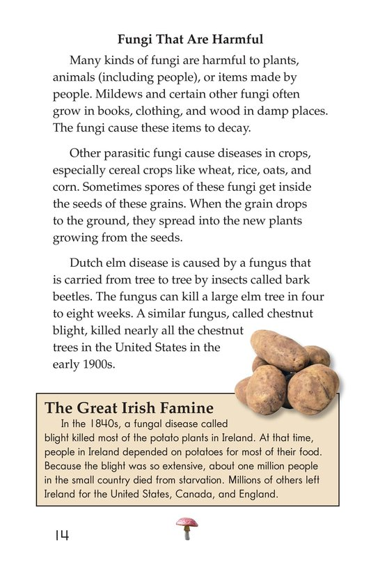 Book Preview For Fungus Among Us Page 14