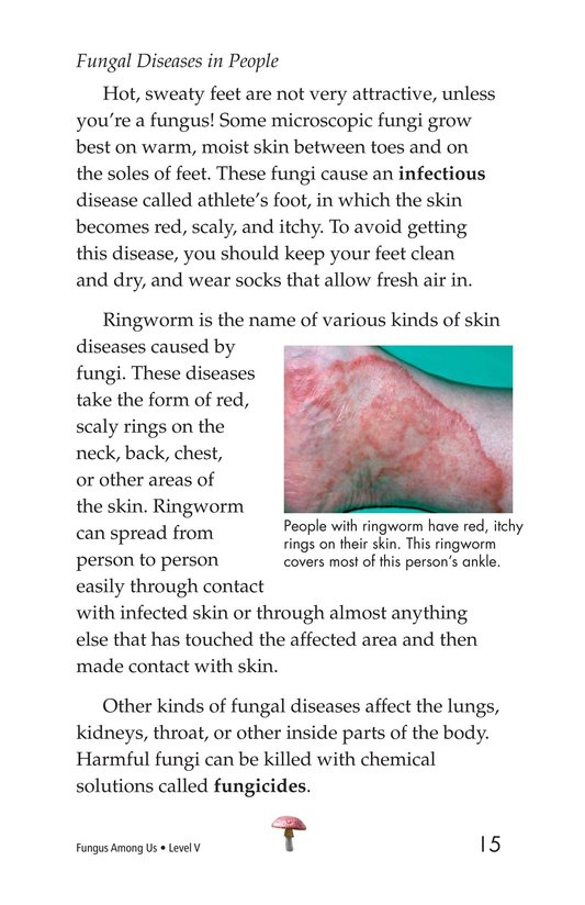 Book Preview For Fungus Among Us Page 15