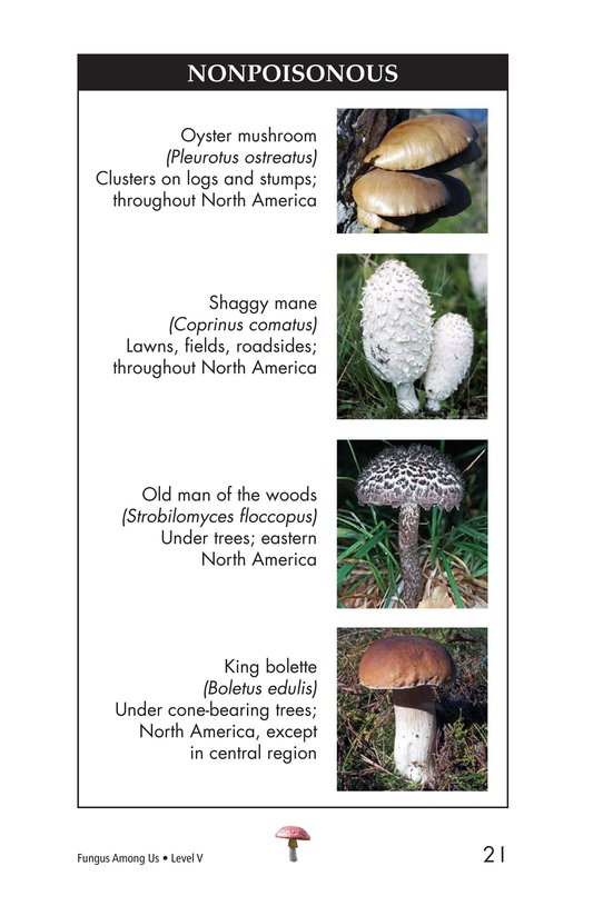 Book Preview For Fungus Among Us Page 21
