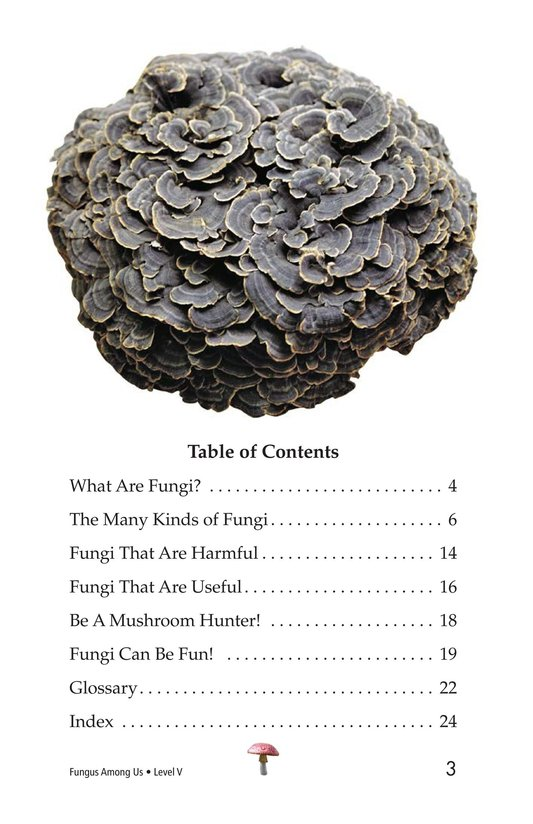 Book Preview For Fungus Among Us Page 3