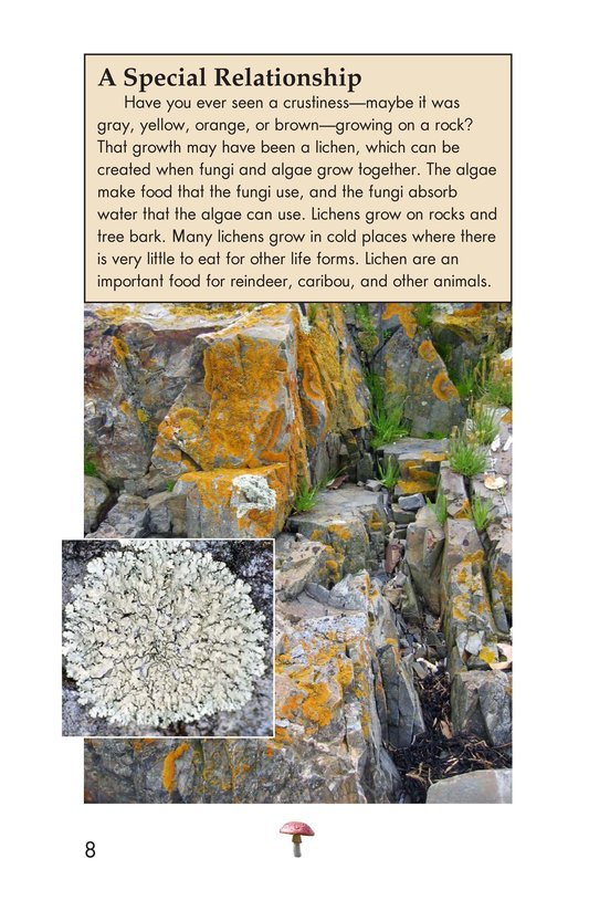 Book Preview For Fungus Among Us Page 8
