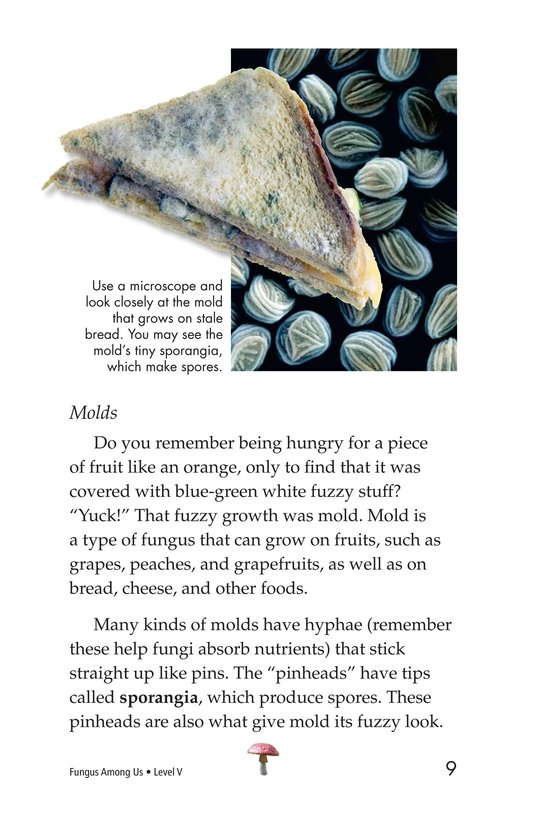 Book Preview For Fungus Among Us Page 9