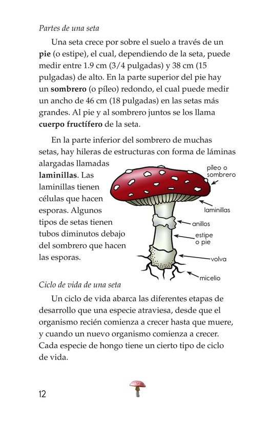 Book Preview For Fungus Among Us Page 12