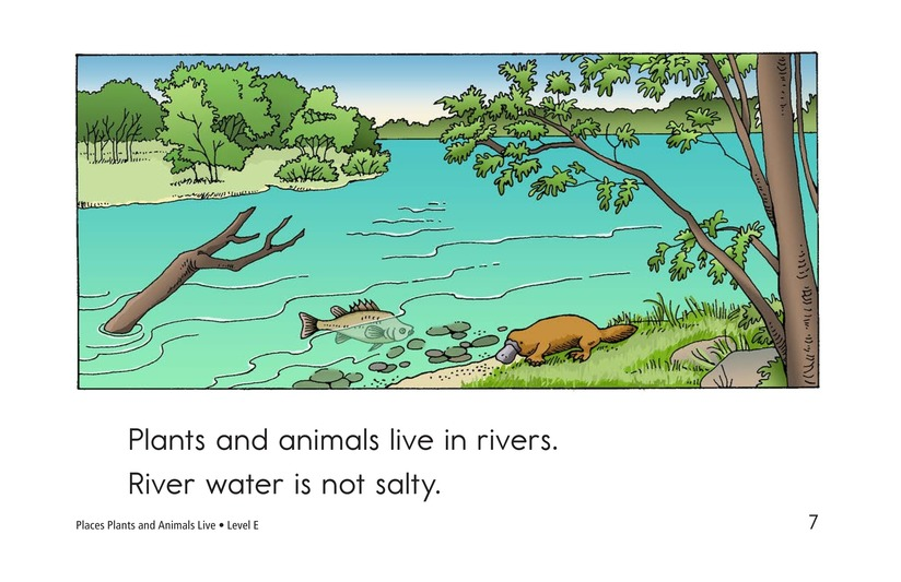 Book Preview For Places Plants and Animals Live Page 7