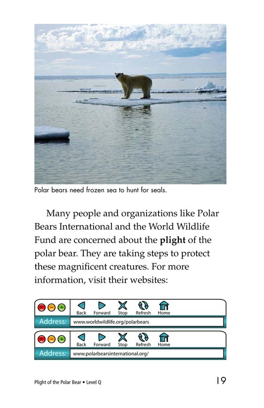 Book Preview For Plight of the Polar Bear Page 19