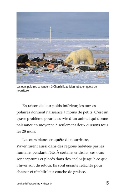 Book Preview For Plight of the Polar Bear Page 15