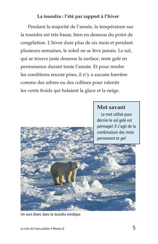 Book Preview For Plight of the Polar Bear Page 5