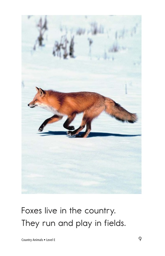 Book Preview For Country Animals Page 9